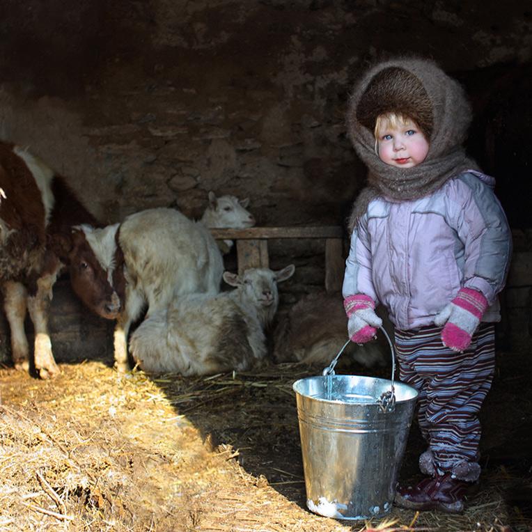 Роль молочных продуктов в питании