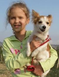 Популярные домашние животные для детей