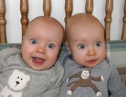 Как спланировать близнецов