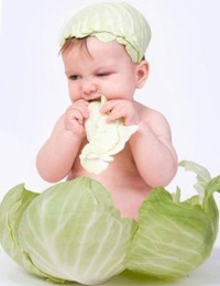 Можно ли ребенку капусту
